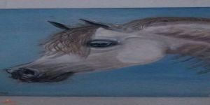 المهرة سهاد .   الفنانة التشكيلية رجاء القرشى