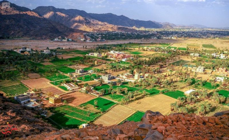 """إطلالة بانورامية على القرى النجرانية وواحاتها من قمة """"جبل رعوم"""""""