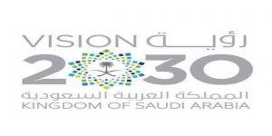 رؤية المملكة 2030 لم تفرض ضريبة على المواطنين والتحول الوطني يتسم بالشفافية