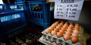 البيض الملوث يصل النمسا