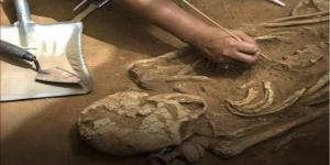 اكتشاف مستوطنة بشرية في أبوظبي عمرها 8 آلاف عام!