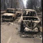 عدد  ضحايا حرائق كاليفورنيا يصل إلى 76 قتيلا و1276 مفقودا