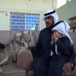 سعودي يربي الذئاب منذ 10 سنوات مع أطفاله في منزل واحد