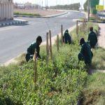 بلدية شعبة نصاب تزرع الحوليات الصيفية وتكثف أعمالها الخدمية والتطويرية
